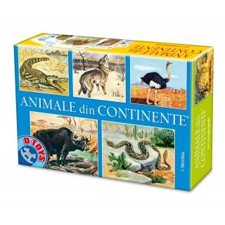 """Joc """"Animale din continente"""""""