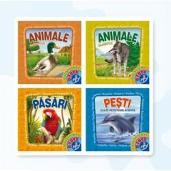 Set cu 4 carti pliante cu animale