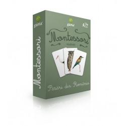 """Carduri Montessori """"Pasari din Romania"""""""