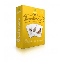 """Carduri Montessori """"Caini si pisici"""""""